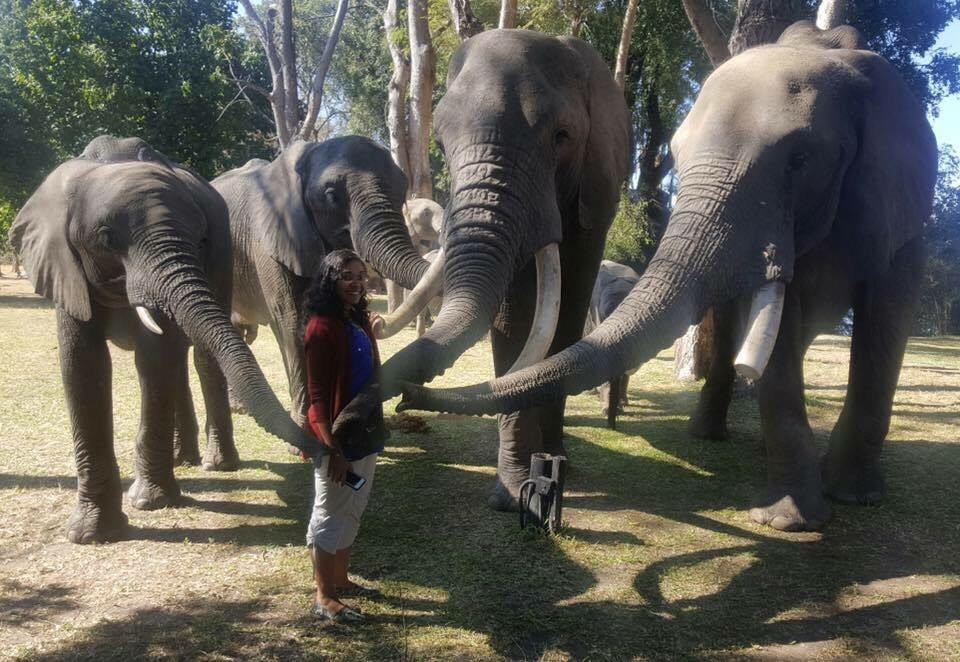 Aniska smiling with no less than four of her elephant friends.