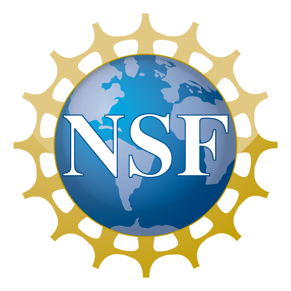 NSF embossed over a picture of the world